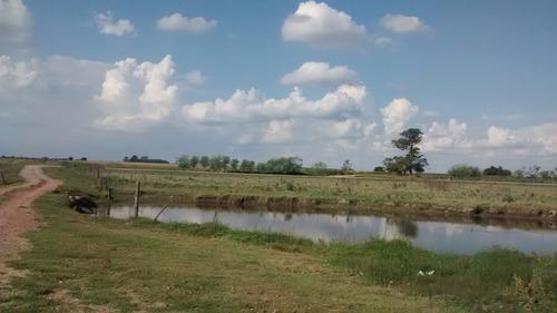 42 hectáreas en san miguel del monte