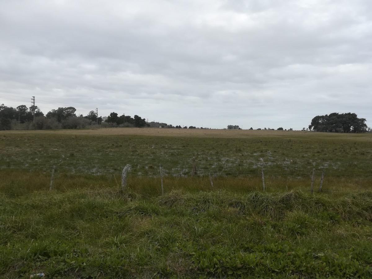 430 hectareas 60% agrícola sobre ruta 11.