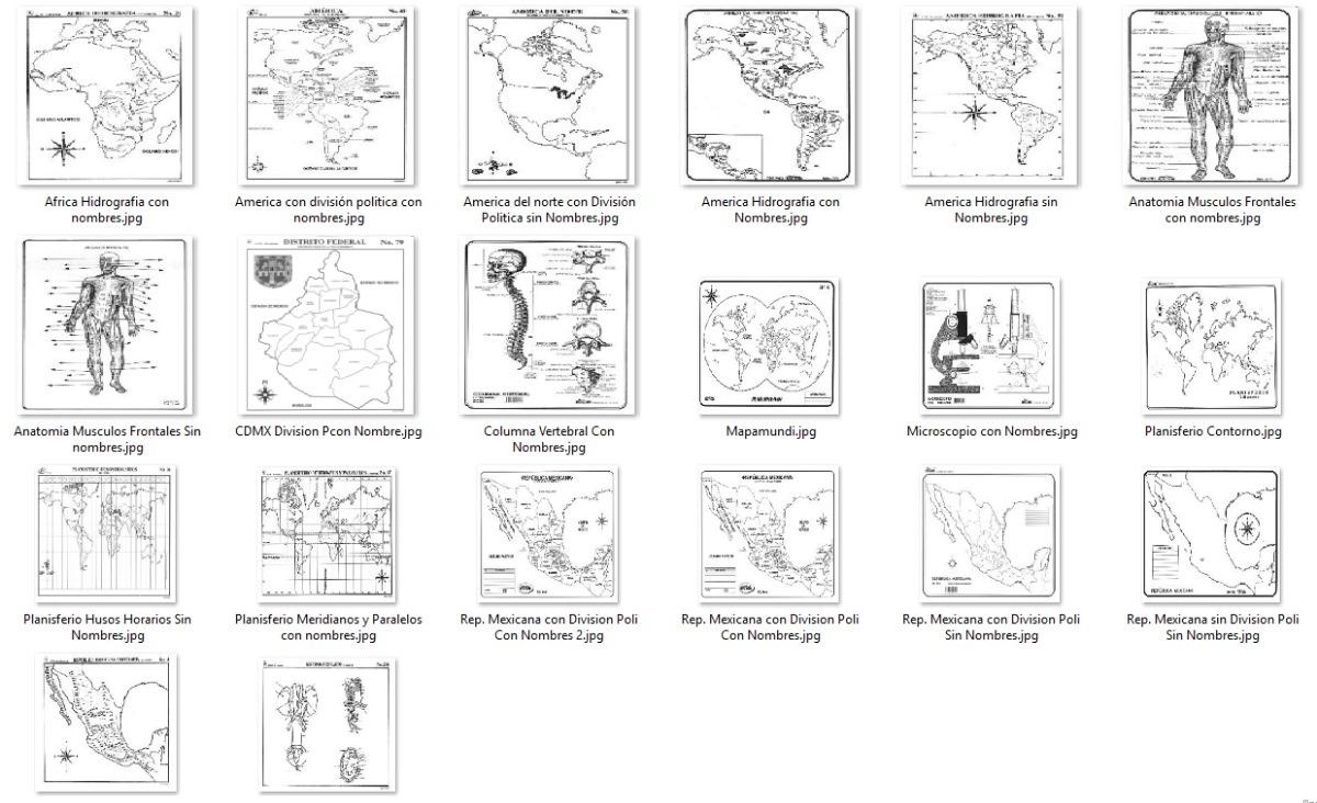 457 monografías escolares y 65 mapas material no físico* $ 70 00146 Esqueleto De Monografia #14
