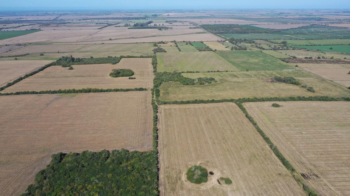 49 ha aldea asuncion, gualeguay - campo agricola en venta