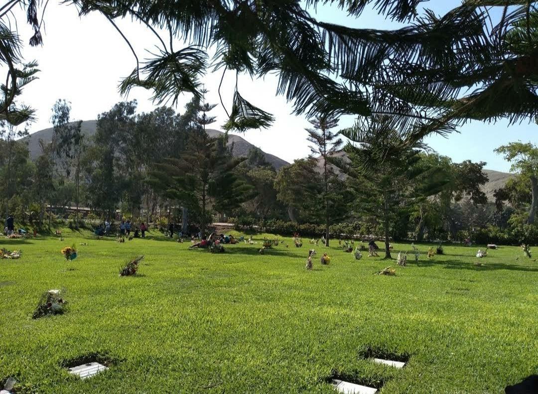 4x espacios individuales en el cementerio