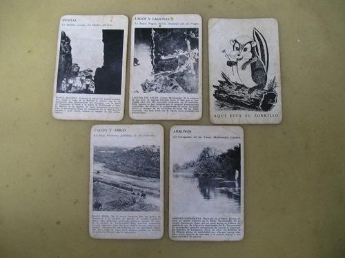 5 antiguas tarjetas con paisajes del interior del uruguay