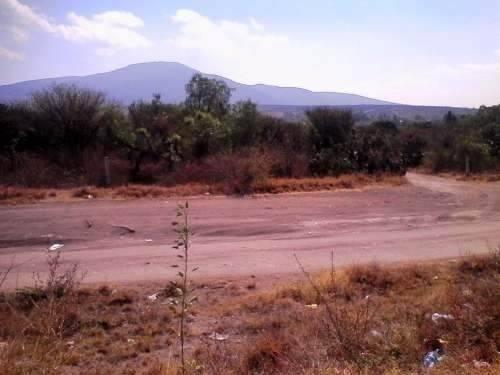 5 hectareas a pie de carretera en jofrito
