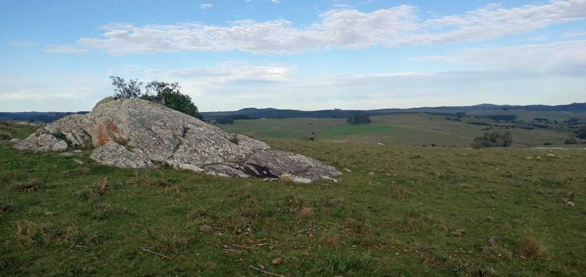 5 hectáreas con excelente vista