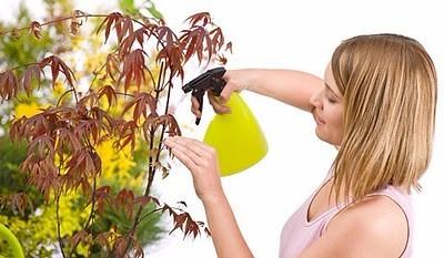 5 litro neem nim puro natural animais plantas hortaliças top