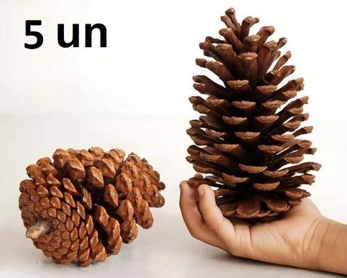 5 pinhas naturais natural enfeite natal artesanato decoração