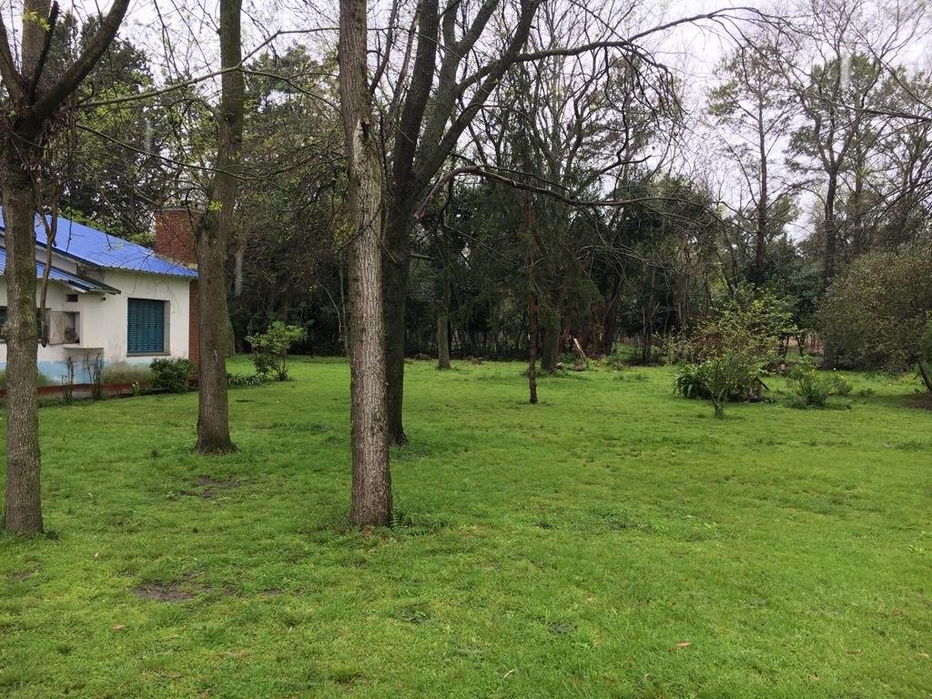 50 hectáreas en venta en brandsen