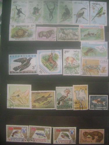 51 selos animais - fauna