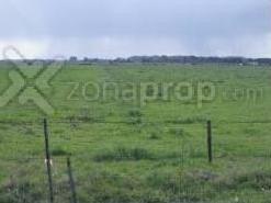 54 hectáreas en gral. las heras