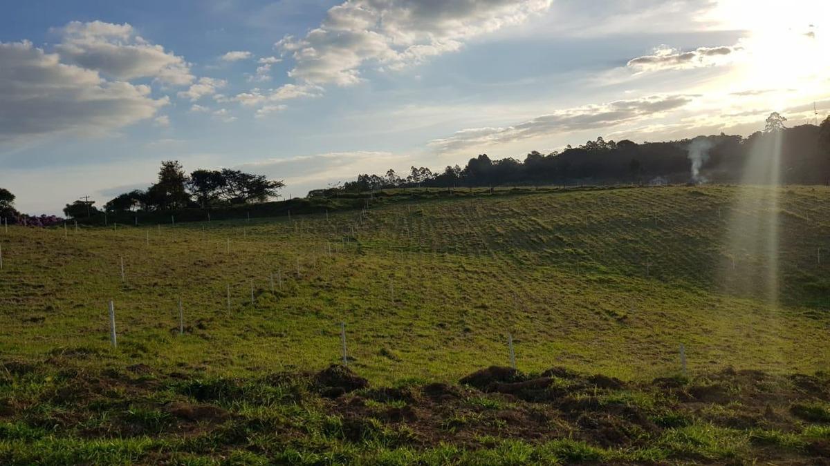 56   terreno próximo a mairinque