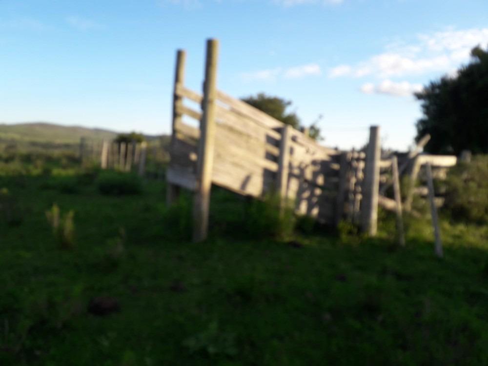 57 has agrícolas en campanero, lavalleja.