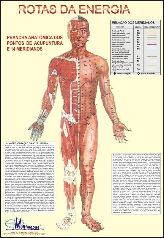 6 Mapas Do Corpo Humano 120x90cm A Sua Escolha - Frete