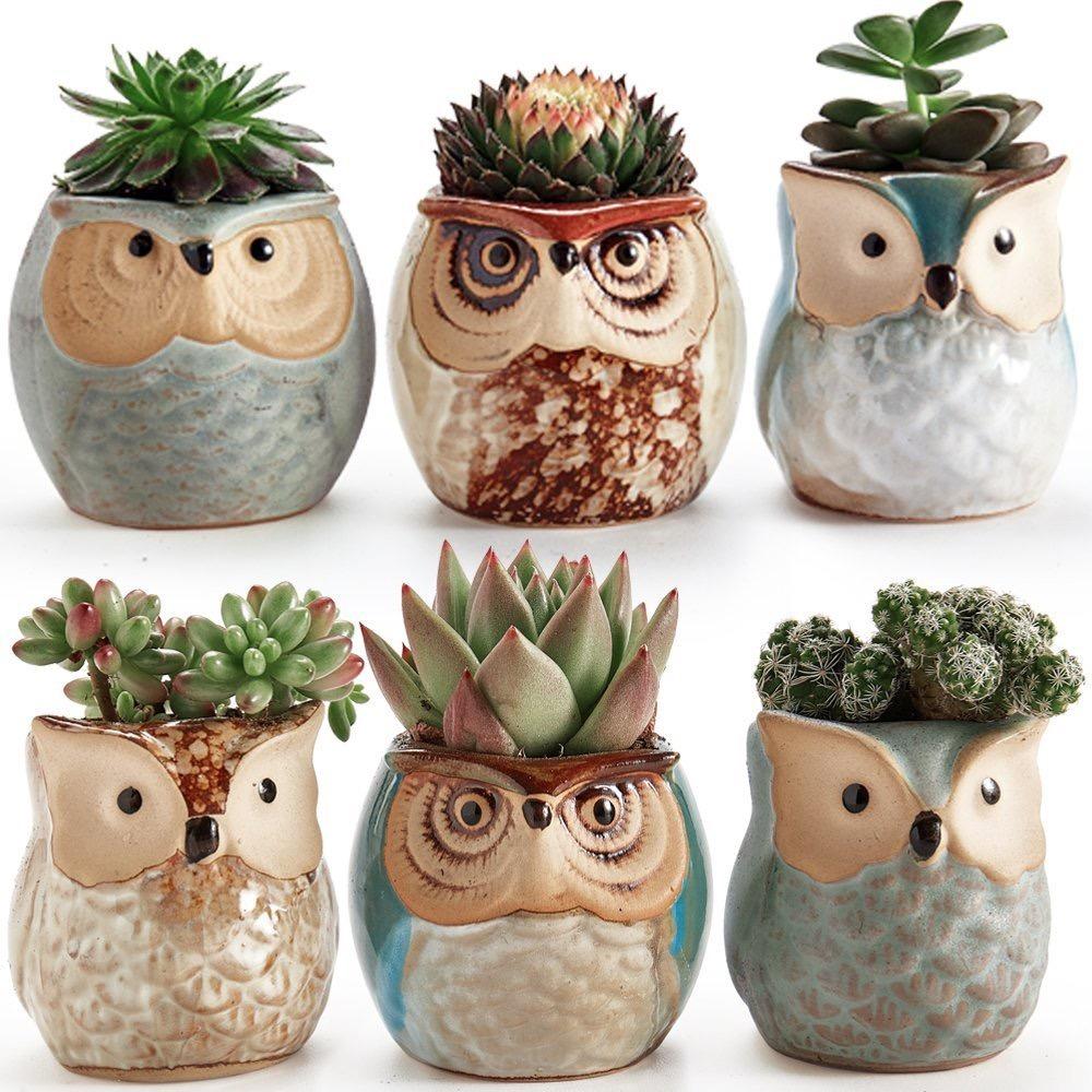 6 mini macetas ceramica con forma de buho distintos Macetas ceramica online