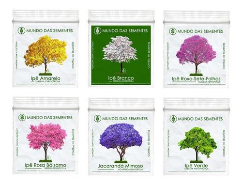 60 sementes ipê branco amarelo roxo rosa verde jacarandá kit