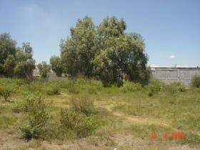 600 pesos x m2, terreno plano de forma rectangular
