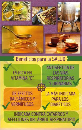 6x miel líquida orgánica certificada las quinas 100% pura