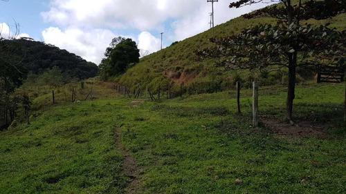 7 barras frente asfalto / pronto para gado ou pupunha