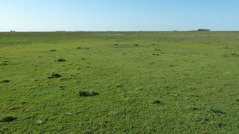 700 has muy buen campo mixto - casco a reciclar y vistas a la laguna