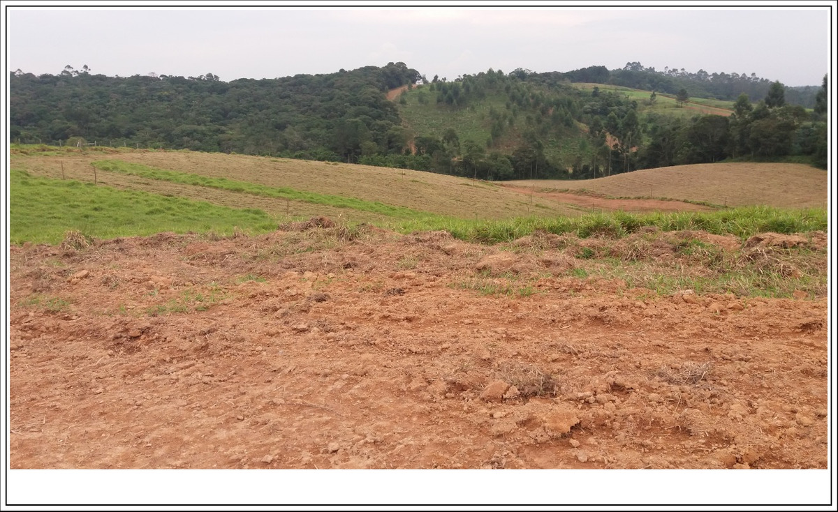 73c- terrenos 1000m2 barato imperdivel
