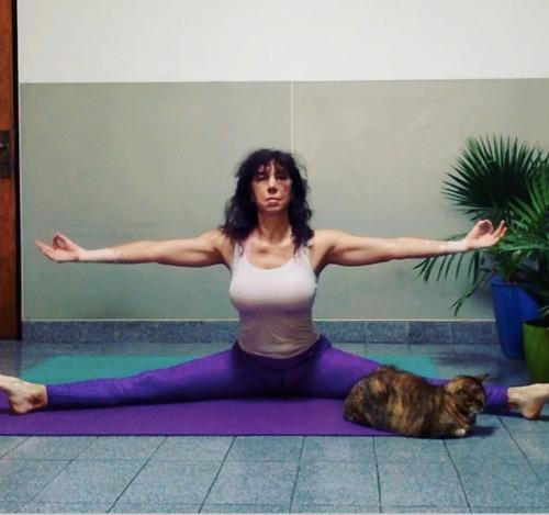 8 clases on line yoga integral,  arte yoga y yoga deportivo