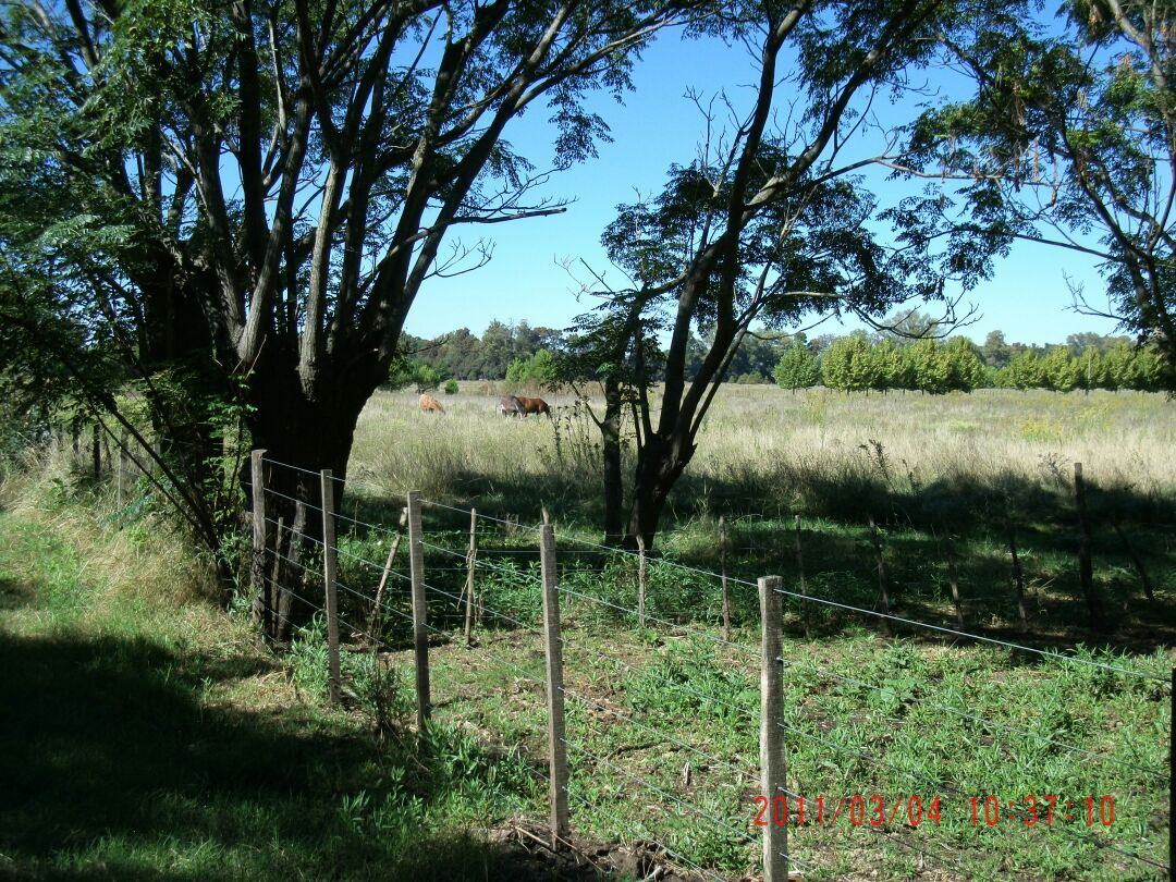 8 hectáreas en lujan sobre autopista***