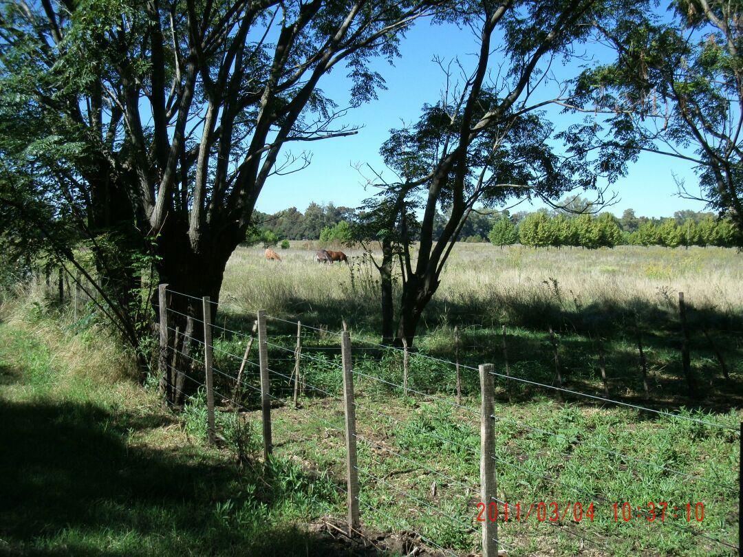 8 hectareas sobre la ruta 7 a 10 min de lujan