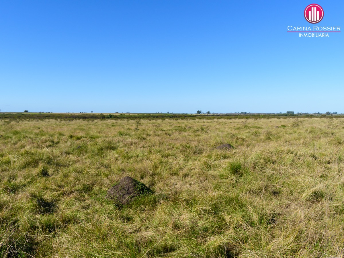 80 hectáreas - la clarita, colón, entre ríos - vcam-005