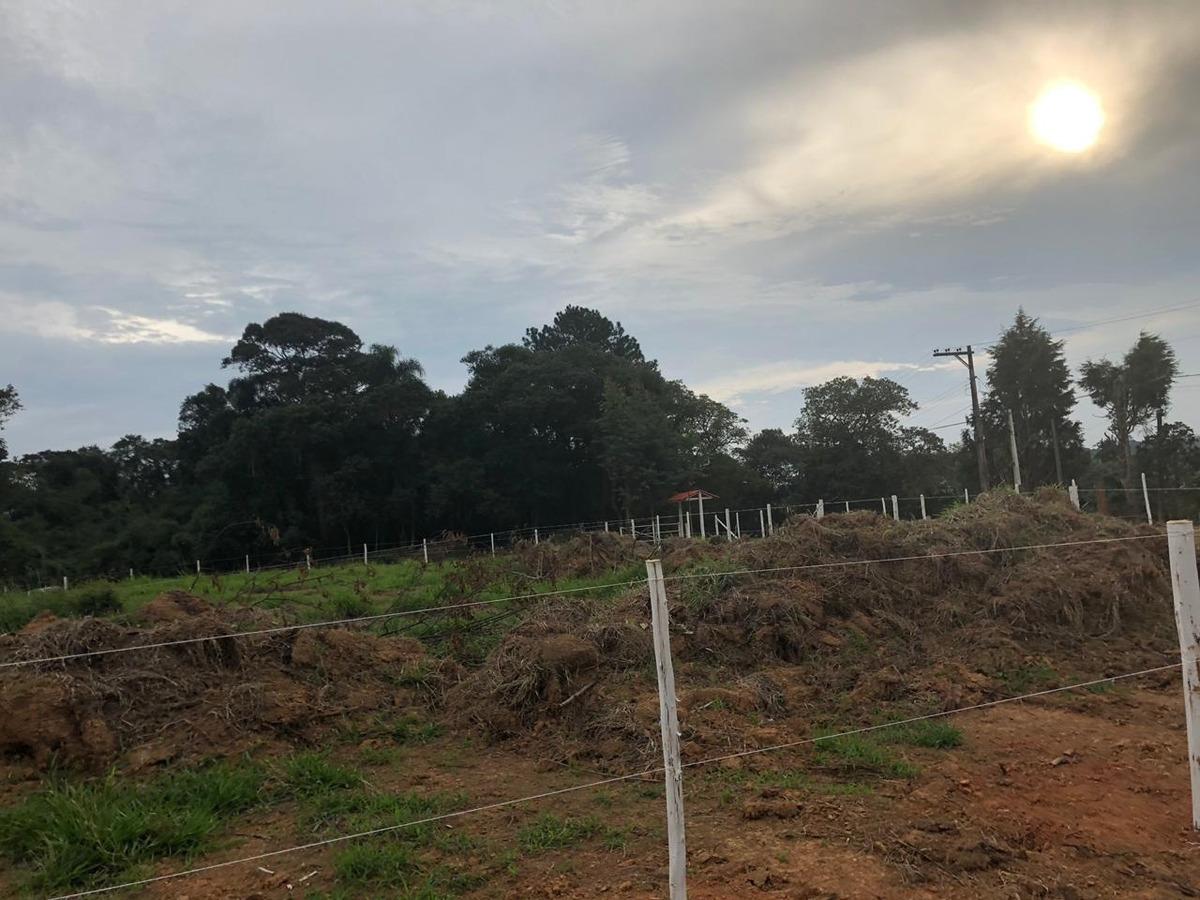 84  terreno na planta