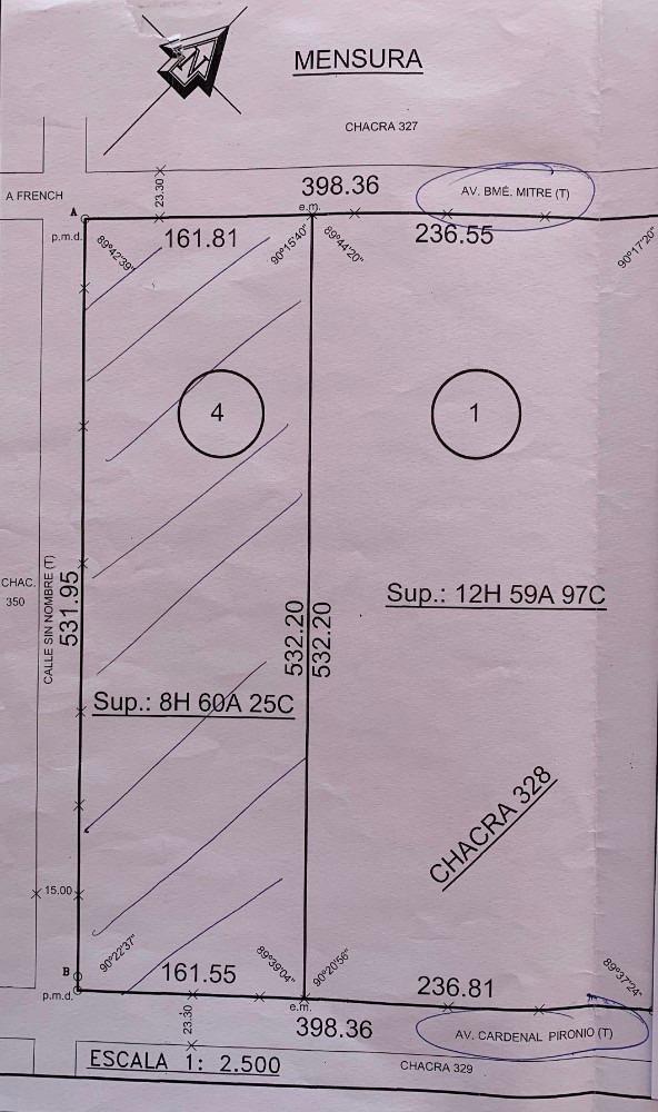 8,6 ha 9 de julio (bs.as) a 500m rotonda r.p 65