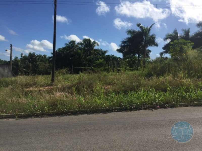 (8973)  area rural no distrito de massaranduba - v-8973