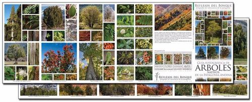 9 guías fotográficas de naturaleza de la patagonia.