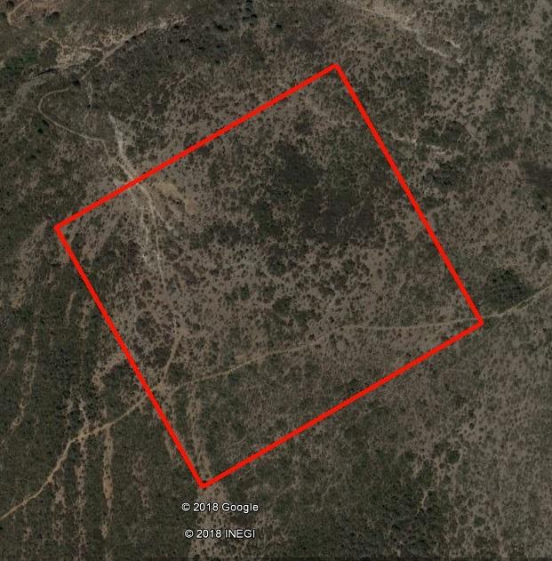 9 hectáreas colindantes con universidad de arkansas