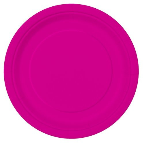 9  neon pink party placas 16ct