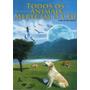 Todos Os Animais Merecem O Céu (capa Nova) Marcel Benedeti