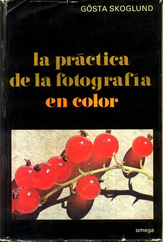 La Practica De La Fotografia En Color - Skoglund Original