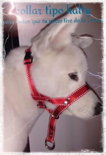 Collar Antijalones Para Perros Estilo Halti