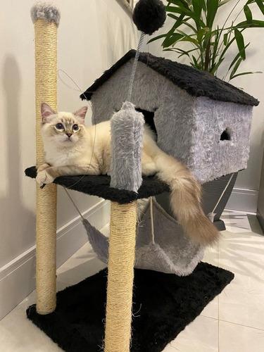 Arranhador Casa Com Rede Gato
