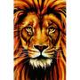 Bíblia Leão Color Média 23cm Com Harpa Capa Dura