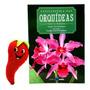Livro Enciclopédia Das Orquídeas Volume 5 (loja Do Zé)
