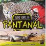 Livro Tudo Sobre O Pantanal: Biomas Editora Pé Da Letr