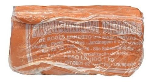 Argila Escolar Artesanato E Modelagem Vermelha 5kg