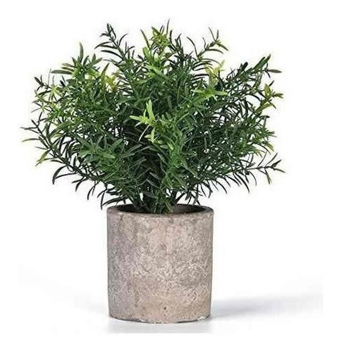 Shuheng Mini Planta Maceta Artificial  Hierba Verde Falsa