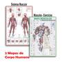 Kit 2 Mapas Sistema Muscular Exercícios Muscular Academia