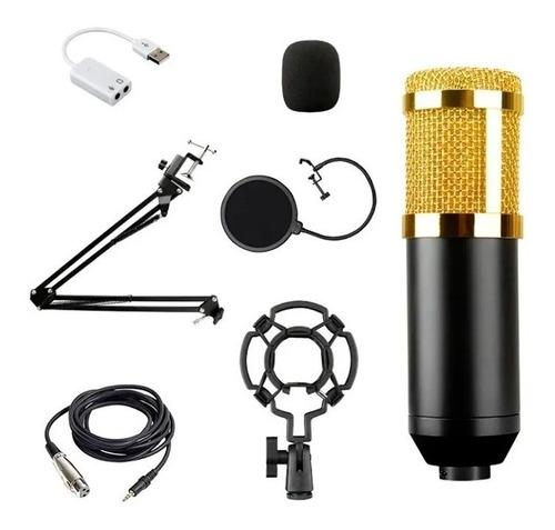 Kit Microfone Condensador Profissional Estúdio Bm800 Brinde