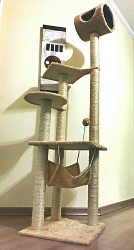 Arranhador Gato Castelo Com Rede