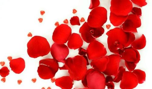 Petalos Rosas Artificiales