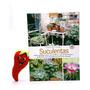 Revista Coleção Seu Jardim Volume 2: Suculentas (loja Do Zé)