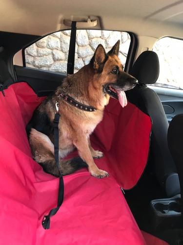 Capa Pet Protetora Para Carros! Cachorro Filhotes Adultos