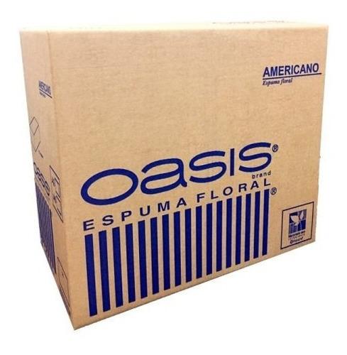 Oasis® Espuma Floral Americano X 48 Bloques