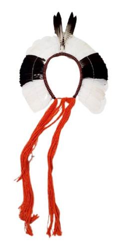 Cocar Indígena Indio Exclusivo Para Uso Quadro Ou Decoracao
